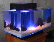Дизайнерский аквариум