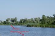 Продам или обменяю на различные варианты земельный участок 4 га в лесу