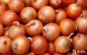 продам оптом капусту,  лук и морковь со склада !