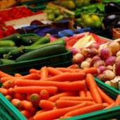 Разнорабочие на сбор и упаковку овощей.( Польша)