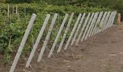 Столбики бетонные виноградные Опт и розница .Доставка по Украине