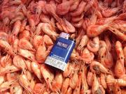 Экспорт креветка черноморская