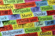 Курсы чешского языка в учебном центре «Твой Успех» Херсон. Таврический