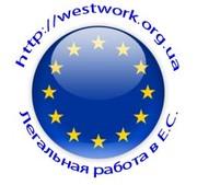 Работа в Польше на кондитерской фабрике